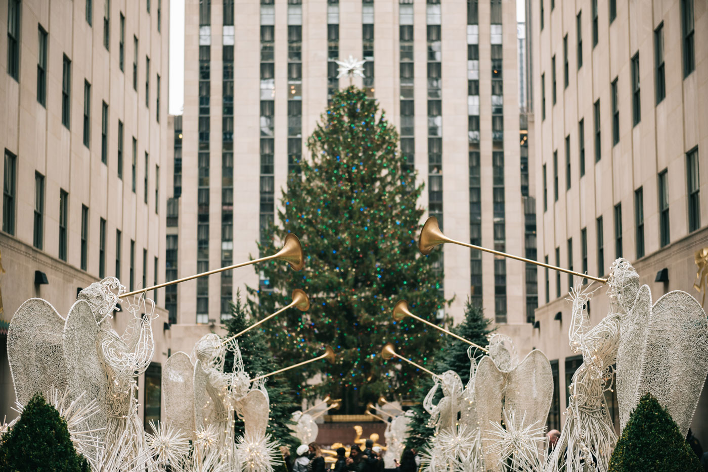 rockefeller christmas tree 2016