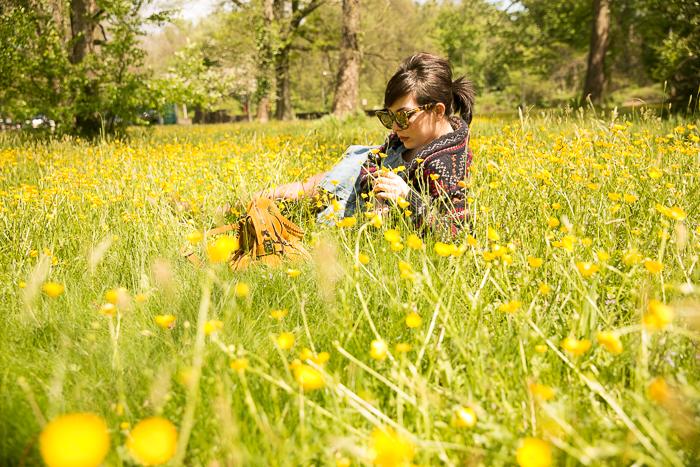 flower field-1