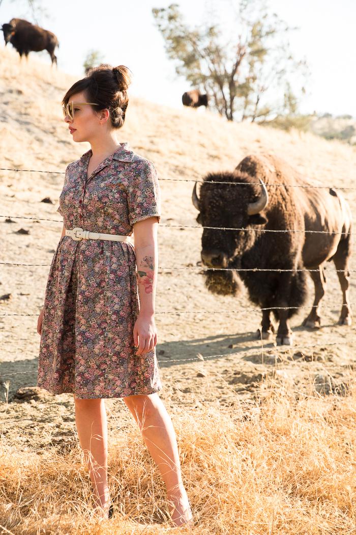 buffalo bungalow camatta ranch