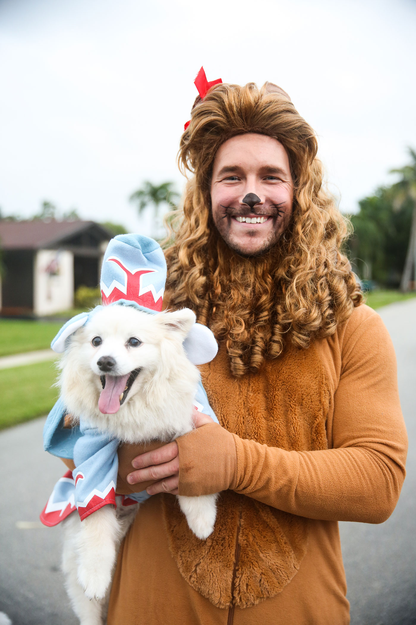 Flying Monkey and Cowardly Lion costumes, wizard of oz